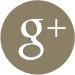 Google+t